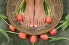 Nail at Tammy's Hair Trend - Concord: $20 for $40 Worth of Pedicures — Nails by Natalie