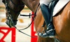 New York Dressage - Warwick: Two or Five One-Hour Private Horseback-Riding Lessons at New York Dressage (Up to 52% Off)