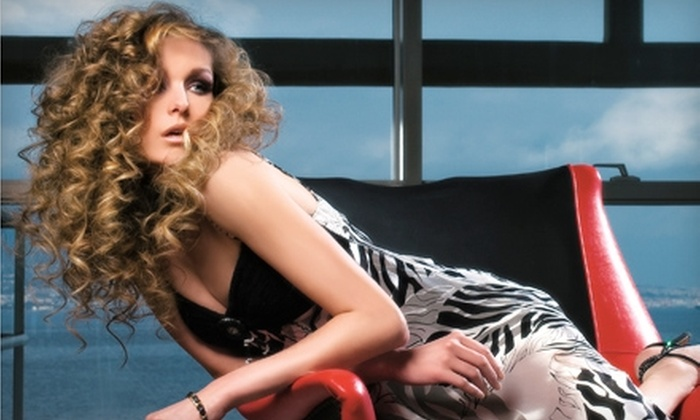 The Art of Hair Salon - Arlington: $220 for $500 Worth of Hair Extensions at The Art of Hair Salon in Arlington