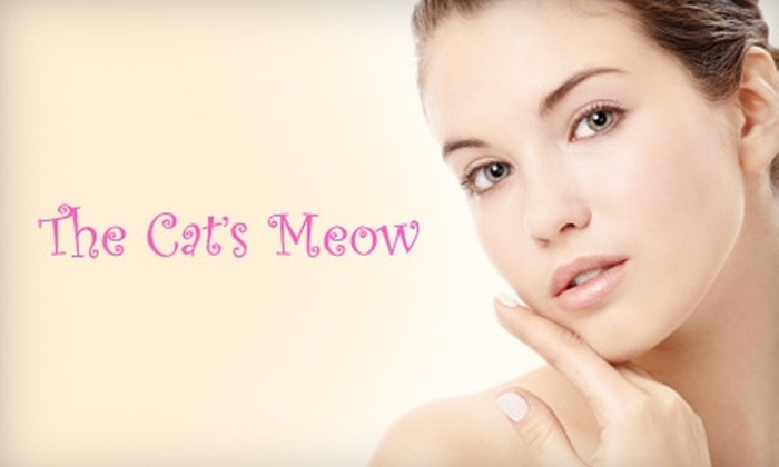 Cat's Meow - South Central: $20 for $40 Worth of Spa Services at the Cat's Meow Plus 20% Off All Products