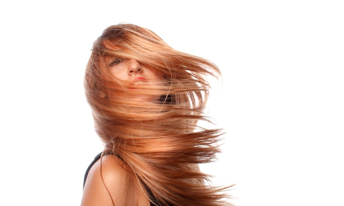 The Discount Beauty Store - Rowley: $8 for $15 Worth of Haircare — The Discount Beauty Store