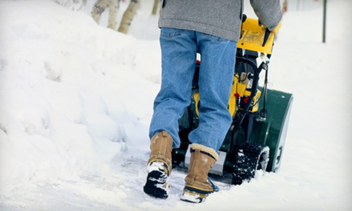 Elite Roofing - Kalamazoo: Snow-Removal Services or Home Energy-Saving Analysis from Elite Roofing (Up to 78% Off)
