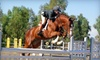 Stepping Stone Farms - Murrieta: $49 for Horseback-Riding Evaluation and Two Lessons at Stepping Stone Farms in Temecula ($205 Value)