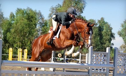 Stepping Stone Farms - Stepping Stone Farms in Temecula