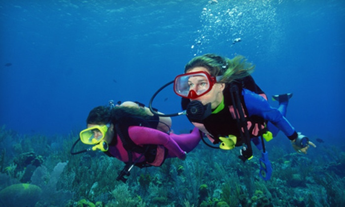 QC Scuba - Multiple Locations: PADI Discover Scuba Course for One or Two at QC Scuba in Wantagh