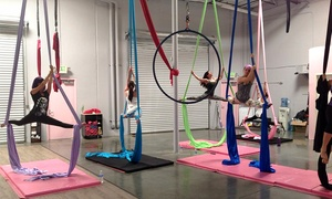 Polecats Aerial Fitness: Four or Eight Pole Fitness, Aerial Silks, or Lyra Classes at Polecats Aerial Fitness (Up to 68% Off)
