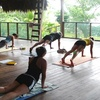 Up to 61% Off Classes at Bodhi Yoga in Bee Cave