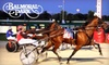 Maywood Park & Balmoral Park - Multiple Locations: $14 for $25 Worth of Dinner, a Program, and a $2 Wager for Horse Racing (Up to $31.50 Value)