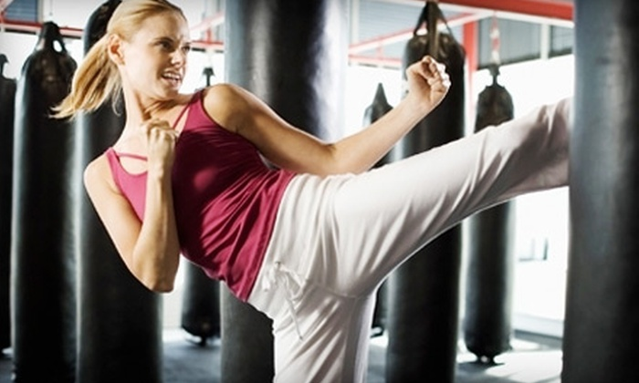 Wiseman's Martial Arts - Mt. Pearl: One Month of Kickboxing Classes, Including Ladies' Cardio Classes, or One Month of Kenpo Karate Classes at Wiseman's Martial Arts