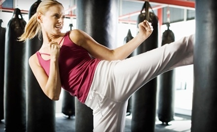 Wiseman's Martial Arts: One-Month of Kickboxing Classes - Wiseman's Martial Arts in Mt. Pearl