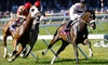 Monmouth Park Racetrack - Oceanport: $15 for Clubhouse Admission, One Clubhouse Box-Seat Ticket, Valet Parking, and More at Monmouth Park Racetrack in Oceanport ($36 Value)
