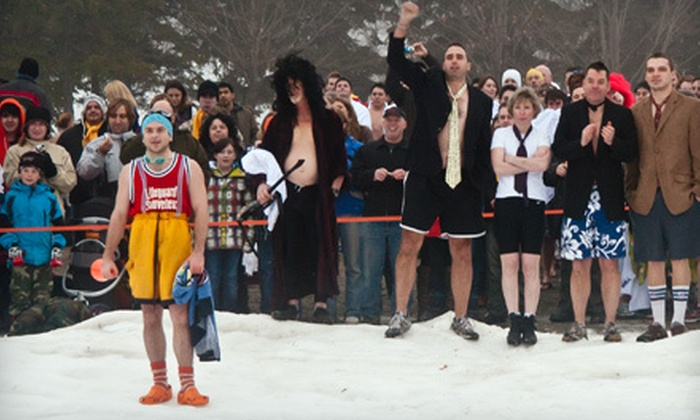 Sears Great Canadian Chill - Stanley Park: Polar Bear Dip for One or Four at the Great Canadian Chill on Saturday, February 18 (Up to 55% Off)