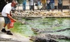 Animal World & Snake Farm Zoo - New Braunfels: $10 for Two General-Admission Tickets to Animal World and Snake Farm Zoo in New Braunfels (Up to $21.11 Value)