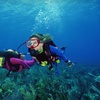 Up to 55% Off Scuba-Diving Courses