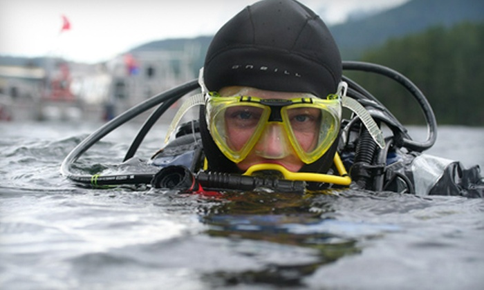 Ocean Pro Divers - Multiple Locations: Discover Scuba Course or $99 for $250 Worth of Classes at Ocean Pro Divers