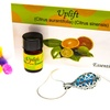 Essential Oil Diffuser Necklace with Uplift Essential Oil Blend