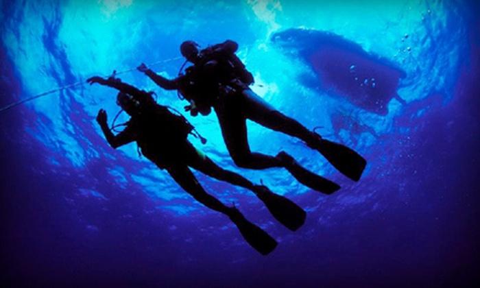 Diving Locker - Kitsilano: Discover Scuba Course or Discover Snorkelling Course at Diving Locker (Half Off)