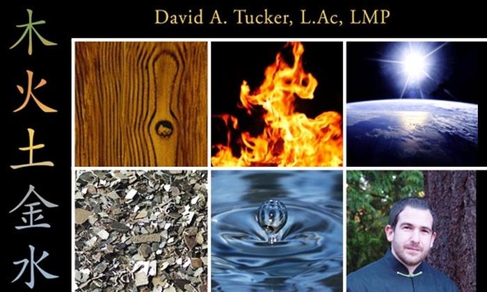 The Zen Healing of David Tucker - Fremont: Hour-long Acupuncture Treatment at The Zen of Healing