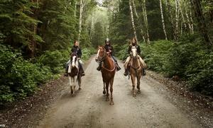 Aleya Tarver Horsemanship: $30 for $60 Groupon — Aleya Tarver Horsemanship