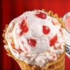 $10 for Frozen Treats at Bruster's Real Ice Cream