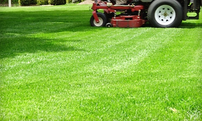 D & D Professional Mowing - Columbia, MO: $25 for $50 Worth of Lawn-Care Services from D & D Professional Mowing