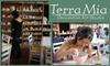 Terra Mia - Noe Valley: $40 Toward Terra Mia Decorative Art Studio