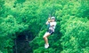 Eco Adventure Ziplines (OLD) - Hermann: $35 for a Zipline Tour with Frequent Flyer Card from Eco Zipline Tours in New Florence ($70 Value)