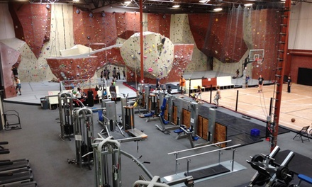 One-Day or One-Month Pass for Rock-Climbing Sessions at Rock Fitness (Up to 46% Off)