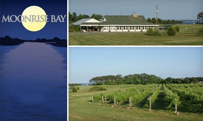 Moonrise Bay Vineyard - Fruitville: $10 for a Wine Tasting for Two and a Bottle of Wine at Moonrise Bay Vineyard (Up to $24 Value)