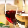 $8 for Bottle of Wine, Tasting, and Tour