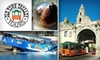 San Diego Seal Tour - Old Town: $27 for the Old Town Trolley Tour and Seal Tour with Old Town Trolley Tours of San Diego, Inc.