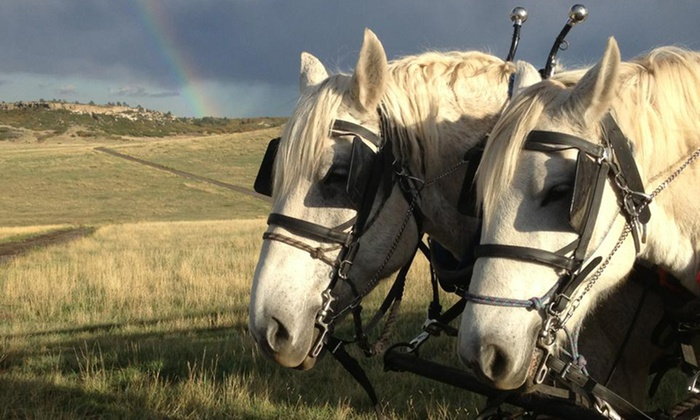 HRCA Backcountry Wilderness - Highlands Ranch Law Enforcement Facility: $250 for a Two-Hour Semi-Private Hayride for Up to Eight from HRCA Backcountry Wilderness ($500 Value)