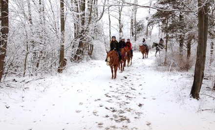 Stay at Pinegrove Family Dude Ranch in the Catskills. Dates into May.