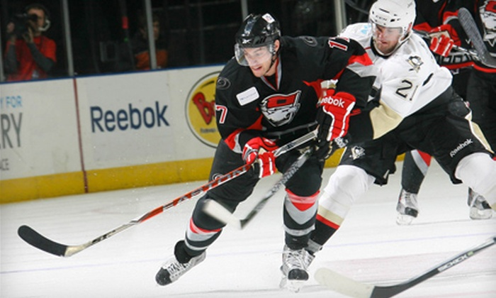 Charlotte Checkers - Charlotte: Two Tickets to See the Charlotte Checkers at Time Warner Cable Arena on December 3 or December 4. Four Options Available.