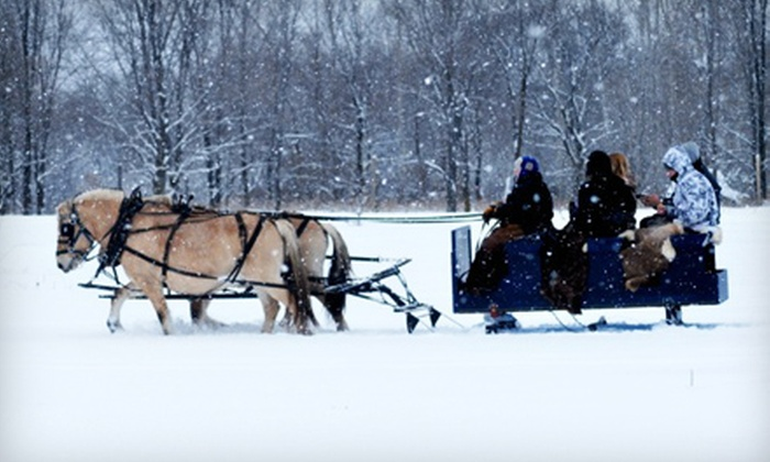 Broken Tree Horse & Harness and Captain's on Long Lake - Multiple Locations: Sleigh Ride and Meal for Two or Four at Broken Tree Horse & Harness and Captain's on Long Lake in Isanti (Up to 57% Off)
