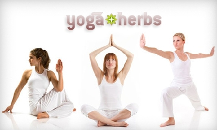 Yoga + Herbs - Central Jersey: $25 for a Yoga Five-Class Card ($90 Value) or $29 for Four Weeks of Children's Yoga Classes ($60 Value) at Yoga + Herbs