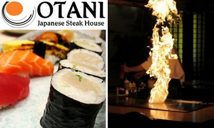 Otani Japanese Steak & Seafood - Countryside: $15 for $30 Worth of Sushi and Fine Japanese Fare from OTANI Japanese Steak & Seafood