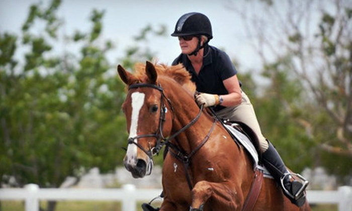 Four Star Farm - Multiple Locations: $99 for Three 45-Minute Horseback-Riding Lessons at Four Star Farm ($210 Value)