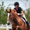 53% Off Horseback-Riding Lessons at Four Star Farm