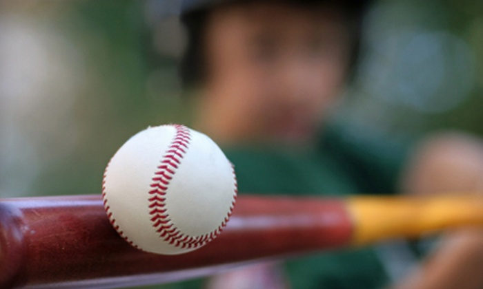 Three Rivers Batting Cages - Pleasant Hills: $35 for a One-Month Baseball-Practice Package at Three Rivers Batting Cages ($100 Value)
