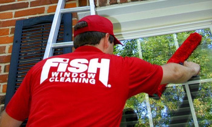 Fish window cleaning in groupon for Fish window cleaning