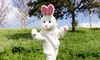 Sealed By Santa: Easter Bunny Letter Package for One or Two from Sealed By Santa (Up to 53% Off)