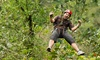The Wilderness Way Adventure Resort Inc. - Ashcroft: Zipline Tour for 2, or Package with Accommodations and Optional Archery at The Wilderness Way (Up to 50% Off)