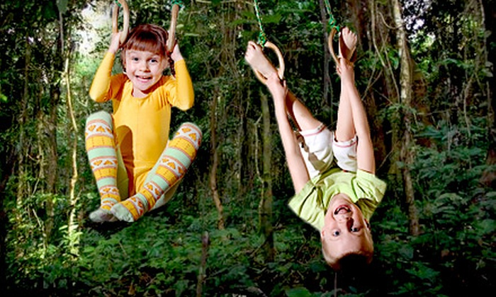 Safari Champ - Safari Champ: $35 for 10 Visits to Jungle-Themed Children's Play Area at Safari Champ ($75 Value)