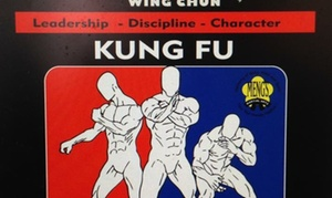 TheKungFuStudio: 8 or 16 Wing Chun and Shaolin Kung Fu Lessons at TheKungFuStudio (Up to 84% Off)