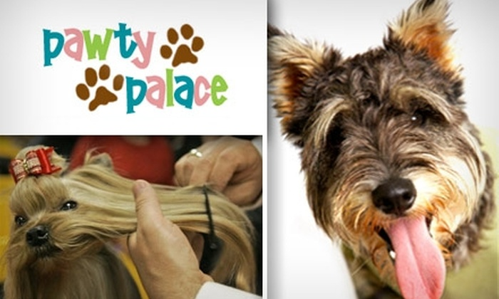 Pawty Palace - Katy: $25 for Full Pet Grooming at Pawty Palace (Up to $85 Value)