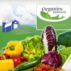 62% Off Organic Produce