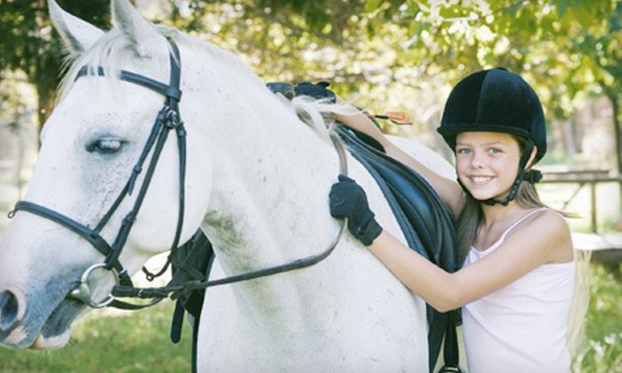 Gable Equestrian - Los Angeles: One or Three 60-Minute Private Horseback-Riding Lessons at Gable Equestrian (Up to 53% Off)