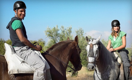 45-Minute Horseback Trail Ride for Two or Four at Valcor Stables (Up to 51% Off)
