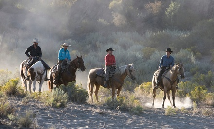 $65 for a Horseback Ride for Two at Rocky Mountain Outfitters ($130 Value)